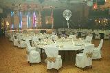Europarkova sanjska poroka v Festivalni Lent