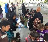 Odzivi na temo: begunci tudi v Sloveniji