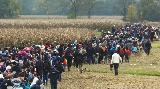V Maribor prispela prva skupina 21 beguncev